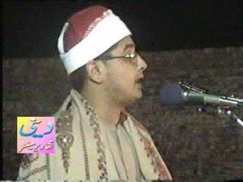 Sheikh Mahmood Shahat Qamar & Rahman